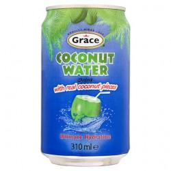 Grace Sumo de Coco C/ Pedaços (Coconut Water whit Real Coconut Pieces)