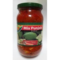 Mausam Mix Punjabi (Achar de Mistura)